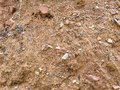 Close-up Red ground and small stones background Royalty Free Stock Photo