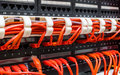 Close up of red network cables connected to switch Royalty Free Stock Photo