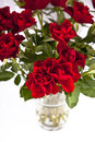 Close up of red roses in vase Stock Photography