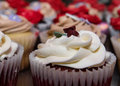 Close up of Red velvet cupcake Royalty Free Stock Photo