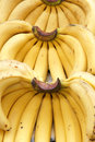 Close up ripe banana Stock Photo