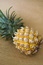 Close up ripe pineapple put brown background Stock Image