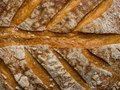 Close up roasted bread background texture. Macro photo, close up Royalty Free Stock Photo