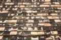 Close up of roof tiles at wat ton kwain chiang mai thailand Royalty Free Stock Photos