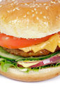 Close up saboroso do Hamburger Imagem de Stock Royalty Free
