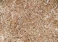 Close up sawdust taxture