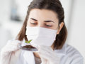 Close up of scientist with plant and soil in lab Royalty Free Stock Photo