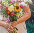 Elderly woman get a beautiful bouquet of field flowers. Senior lady holding a bunch of flowers. Royalty Free Stock Photo