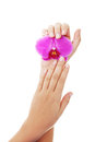 Close up shoot of beautiful female hands Royalty Free Stock Photo