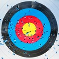 Close up of a shooting target with bullet holes Royalty Free Stock Photo