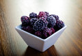Close up shot frozen blackberries white square bowl Stock Images