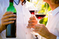 Close-up shot of senior couple drinking red wine Royalty Free Stock Photo