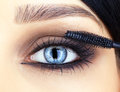 Close up shot of woman eye makeup face and brush applying mascara make on lashes Stock Image