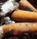 Close up shots of cigarette ashes and butts with a shot Stock Photos