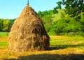 Close-up of a single big haystack near forest Royalty Free Stock Photo