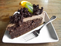Close up slice of chocolate cake photograph a Royalty Free Stock Photo