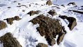 Close up snow and rock top of the mountains zermatt switzerland Royalty Free Stock Images