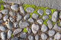Cobblestones and moss Royalty Free Stock Photo