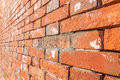 Close up texture of grungy red brick wall background. Royalty Free Stock Photo