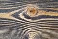 Close-up texture pine wood