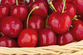 Close up to a red cherries delicious fresh and juicy in basket Royalty Free Stock Image