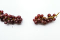 Close up to two red grapes  with white background