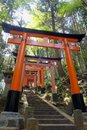 Close up of torii gate gates at fushimi inari shrine in kyoto japan fushimi inari shrine Stock Photo