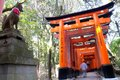 Close up of torii gate gates at fushimi inari shrine in kyoto japan fushimi inari shrine Stock Photos