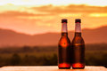 Close up of two beer bottles. mountain background Royalty Free Stock Photo
