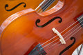 Close-up of two cello. violoncello. Royalty Free Stock Photo