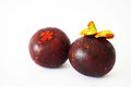 Close-up of two mangosteens in the white background