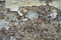 Close up view of crumbling plaster brick wall Royalty Free Stock Photo