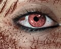stock image of  Close-up view of female`s horror eye with many scars on the face