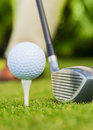 Close up view of golf ball on tee course Royalty Free Stock Image