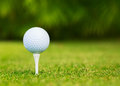 Close up view of golf ball on tee course Stock Photos