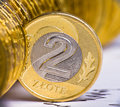 Close up view of Poland currency Royalty Free Stock Photography