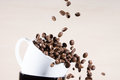 Close up view of white cup standing on black cup with falling down brown roasted coffee beans.