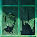 Close up view worn torn green painted screen window frame Royalty Free Stock Images