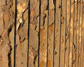 Close up of vintage metal fence braked and demaged by rust Royalty Free Stock Image