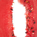 Close up of water melon Stock Photography