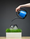 Close up of water pot pouring house model with grass green on grey background concept real estate and care Stock Photography