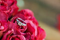 A close up of wedding band engagement ring Royalty Free Stock Image