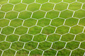 Close up on white football net green grass Stock Images