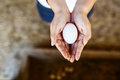 Close up of an woman hands, holding  fresh duck egg. Royalty Free Stock Photo