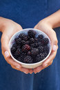 Close Up Of Woman Holding Bowl Of Blackberries Royalty Free Stock Photo