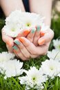 Close up of woman s hands holding flower with nail varnish Stock Photography