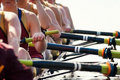 Close up Women's Rowing Team Royalty Free Stock Photo