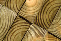 Close up of wood grain Royalty Free Stock Photo
