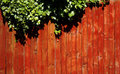 Close up wooden fence panels red with some green leaves Royalty Free Stock Photo