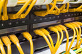 Close up of yellow network cables connected to switch Royalty Free Stock Photo